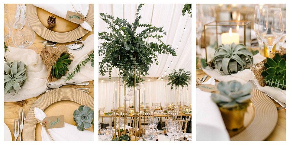 Eucalyptus & Succulent Botanical Wedding Trio